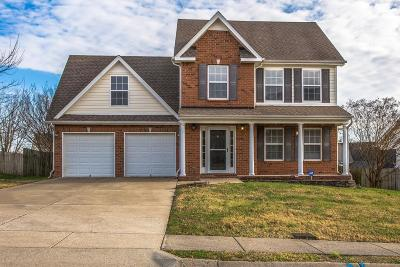 Spring Hill Single Family Home For Sale: 1230 Chapmans Retreat Dr