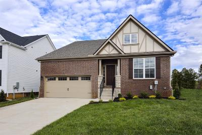 Single Family Home For Sale: 496 Appian Way