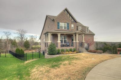 Single Family Home For Sale: 3061 Cooks Landing Ct