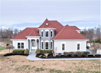 Burns TN Single Family Home Under Contract - Showing: $699,900
