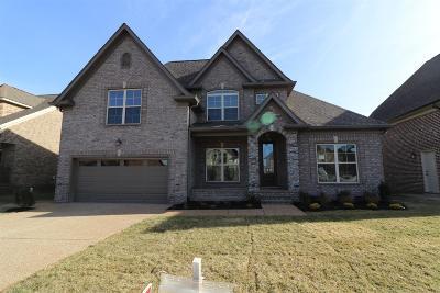 Mount Juliet Single Family Home For Sale: 608 Southshore Pt.