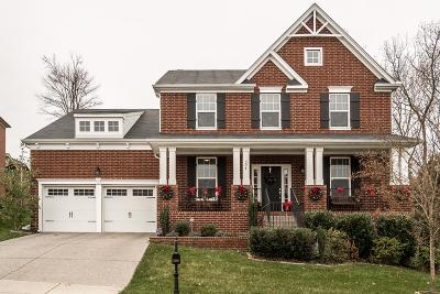 Mount Juliet Single Family Home For Sale: 204 Sterling Woods Dr