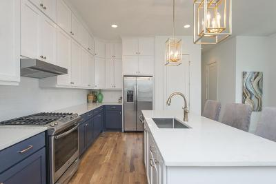 Nashville Single Family Home For Sale: 331 B Vivelle Ave