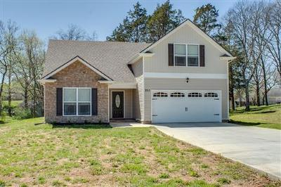 Smyrna Single Family Home For Sale: 707 Valley Green Dr