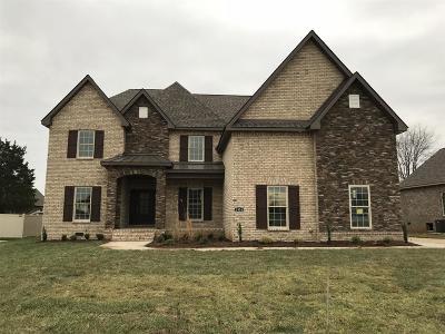 Murfreesboro TN Single Family Home For Sale: $459,900