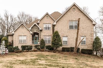 Hendersonville Single Family Home For Sale: 193 Spy Glass Way