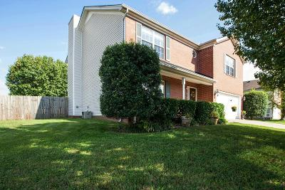 Spring Hill Single Family Home For Sale: 1858 Portview Dr
