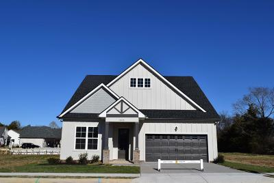Rutherford County Single Family Home For Sale: 3408 Cortona Way