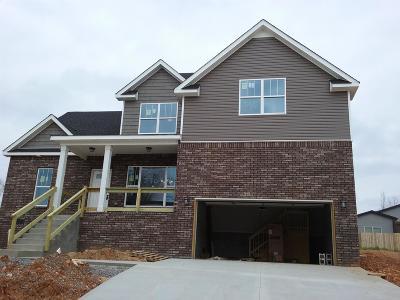 Clarksville Single Family Home For Sale: 346 Renfroe's Landing