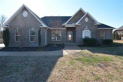 Rutherford County Single Family Home For Sale: 1019 Cascade Falls Dr