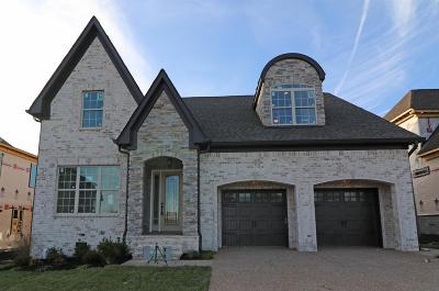 Wilson County Single Family Home For Sale: 619 Southshore Pt
