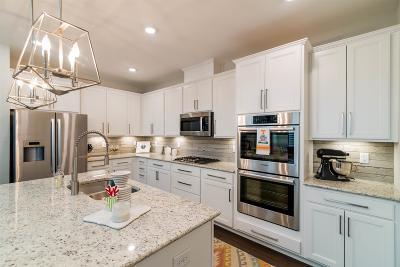 Hendersonville Single Family Home For Sale: 317 Tanglewood Lane