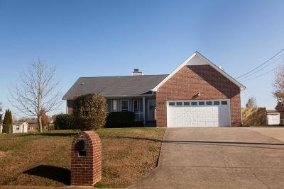 Clarksville Single Family Home For Sale: 1017 Summerhaven Rd