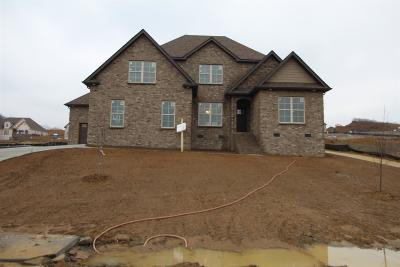 Nolensville Single Family Home For Sale: 320 Jade Creek Hollow(Lot 41)