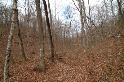 Greenbrier Residential Lots & Land For Sale: Smiley Hollow