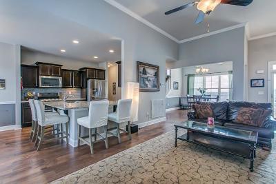 Mount Juliet TN Single Family Home For Sale: $410,000