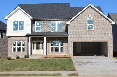 Clarksville TN Single Family Home For Sale: $300,000