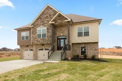 Clarksville TN Single Family Home For Sale: $284,900