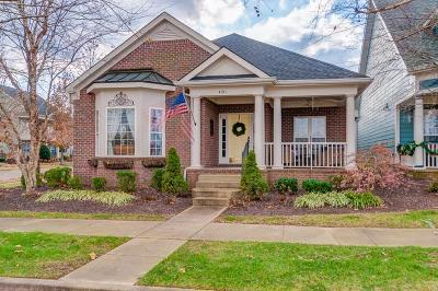 Spring Hill Single Family Home For Sale: 4101 River Links Dr