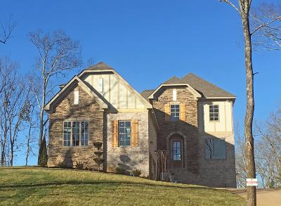 Williamson County Single Family Home For Sale: 212 Belvedere Circle
