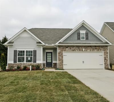 Spring Hill Single Family Home For Sale: 913 Carnation Drive
