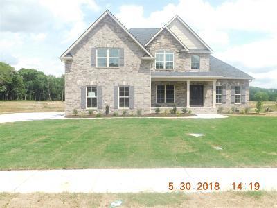 Murfreesboro TN Single Family Home For Sale: $459,000