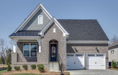 Mount Juliet TN Single Family Home For Sale: $429,900