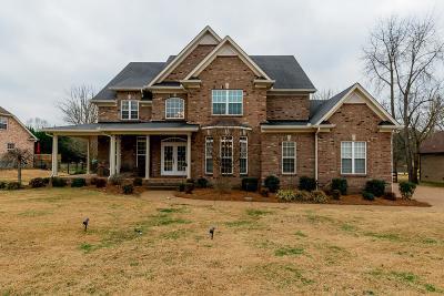 Mount Juliet TN Single Family Home For Sale: $517,000