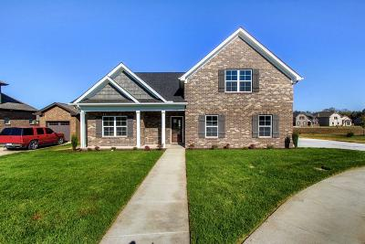 Smyrna Single Family Home For Sale: 5545 Stonefield Drive