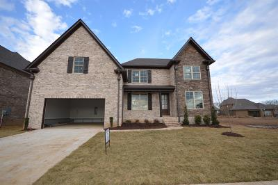 Spring Hill Single Family Home For Sale: 3011 Grunion Lane (340)