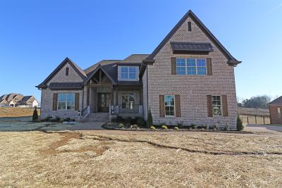 Mount Juliet Single Family Home For Sale: 1309 Stovall Lane