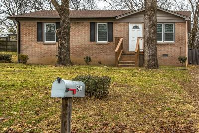 Spring Hill  Single Family Home For Sale: 621 McLemore Ave