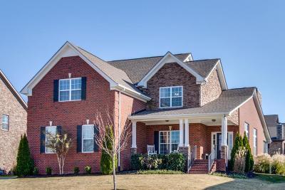 Spring Hill Single Family Home For Sale: 1014 Via Francesco Way