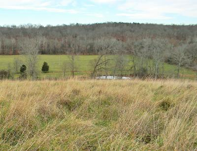 Mcewen Residential Lots & Land For Sale: 2751 Little Blue Ck Rd