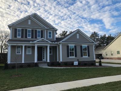 Smyrna Single Family Home For Sale: 114 Saltville Court