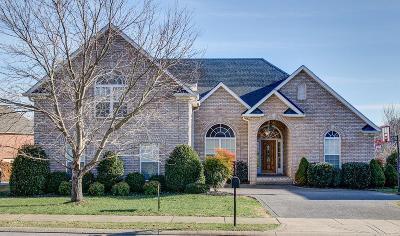 Hendersonville Single Family Home For Sale: 647 Bonita Pkwy