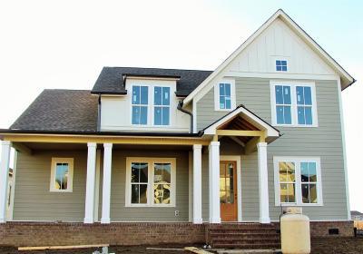 Hendersonville Single Family Home For Sale: 206 Ashington Circle Lot#70