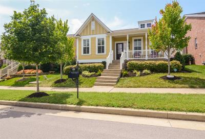 Franklin Single Family Home For Sale: 499 Dabney Dr