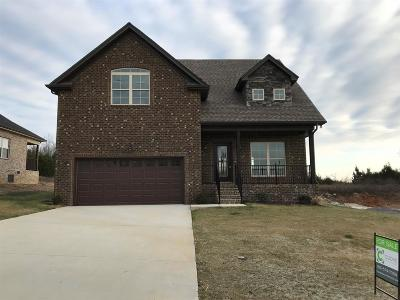 Smyrna Single Family Home Under Contract - Showing: 2320 Tranquility Trail - Lot 82