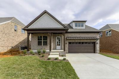 Mount Juliet Single Family Home For Sale: 4 Faith Court