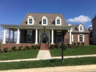 Nolensville Single Family Home For Sale: 613 Vickery Park Drive #195