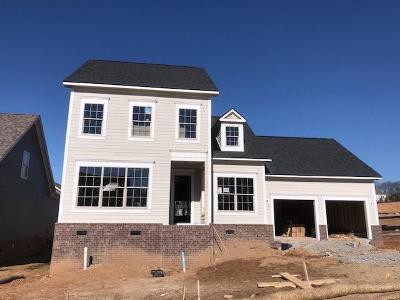 Franklin Single Family Home For Sale: 4005 Farmhouse Drive #103