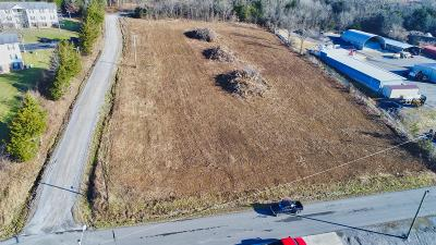 Woodbury TN Residential Lots & Land Sold: $95,000
