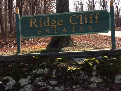 Residential Lots & Land For Sale: 1 Ridge Cliff Dr