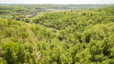 Thompsons Station  Residential Lots & Land For Sale: 5275 Carters Creek Pike