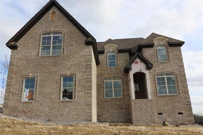 Mount Juliet Single Family Home For Sale: 918 Harrisburg Lane