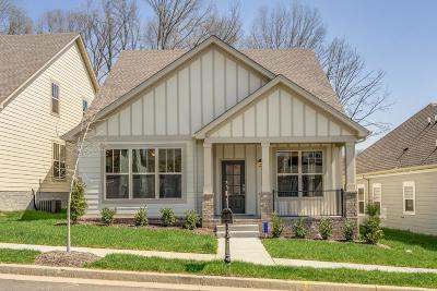 Nolensville Single Family Home For Sale: 4089 Liberton Way