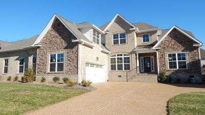 Hendersonville Single Family Home For Sale: 1044 Luxborough Dr