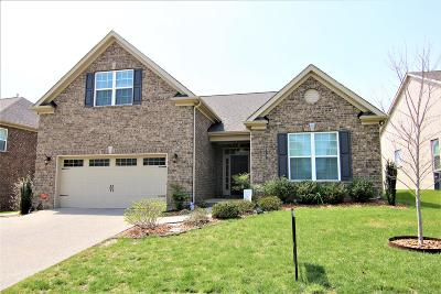 Mount Juliet Single Family Home For Sale: 5012 Napoli Dr