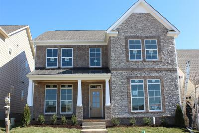 Nolensville Single Family Home For Sale: 4063 Liberton Way
